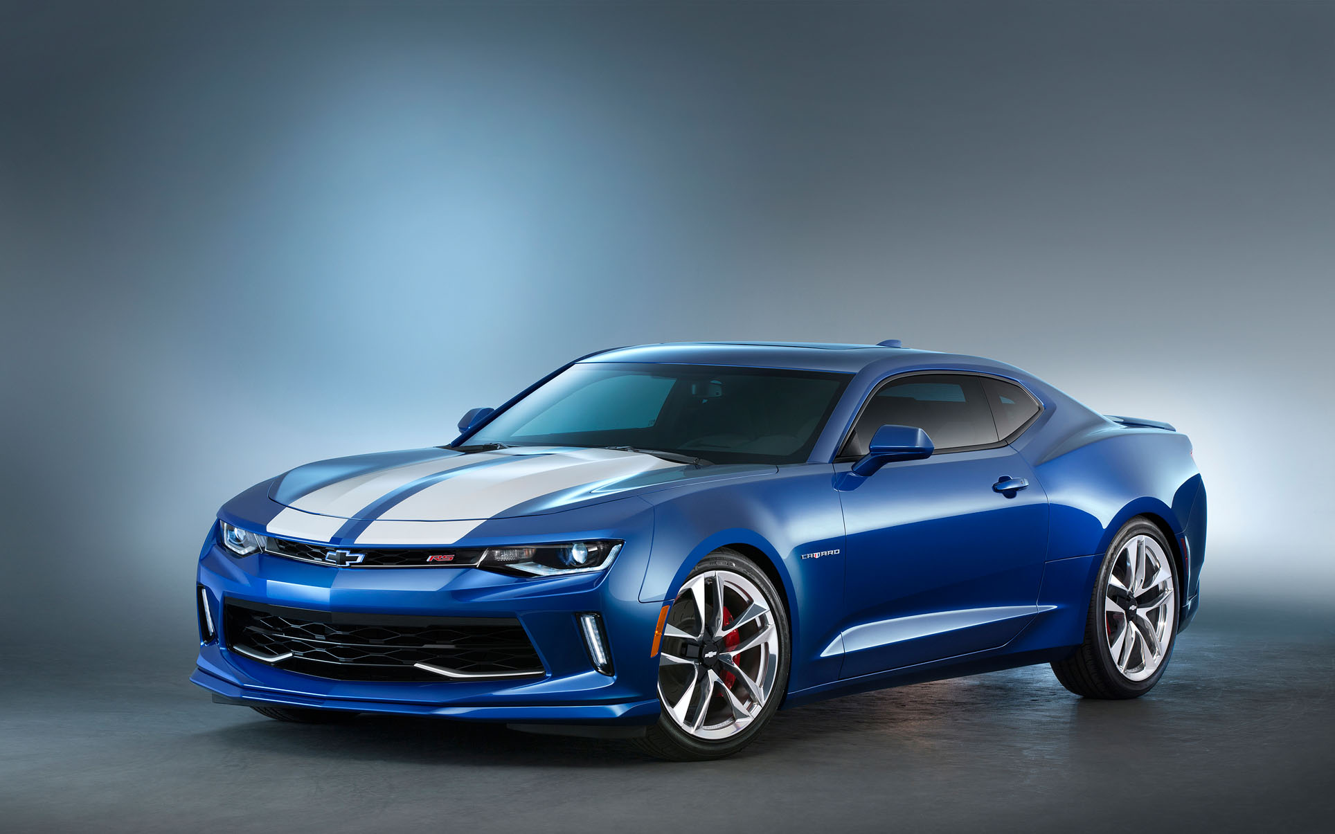 5497971495 moreover 496803402614448530 furthermore 2SS black c6 in addition Animals Mongoose Wallpapers Hd in addition Gallery photo shooting. on camaro chevrolet