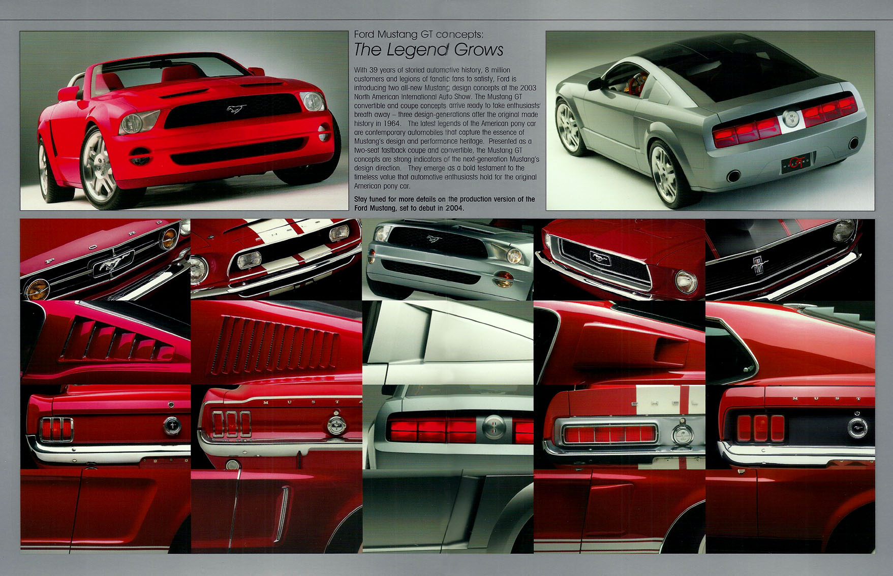 Mustang Concept >> Hot Cars