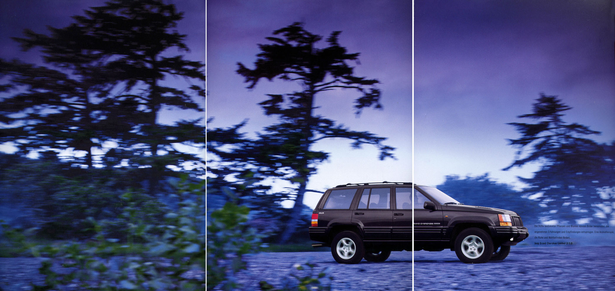 Dsc 0928 Jeep Hinten I204330873 additionally 98grand also Mdp photo thumbnails also J33nDcLz6u as well Wallpaper 0b. on grand cherokee