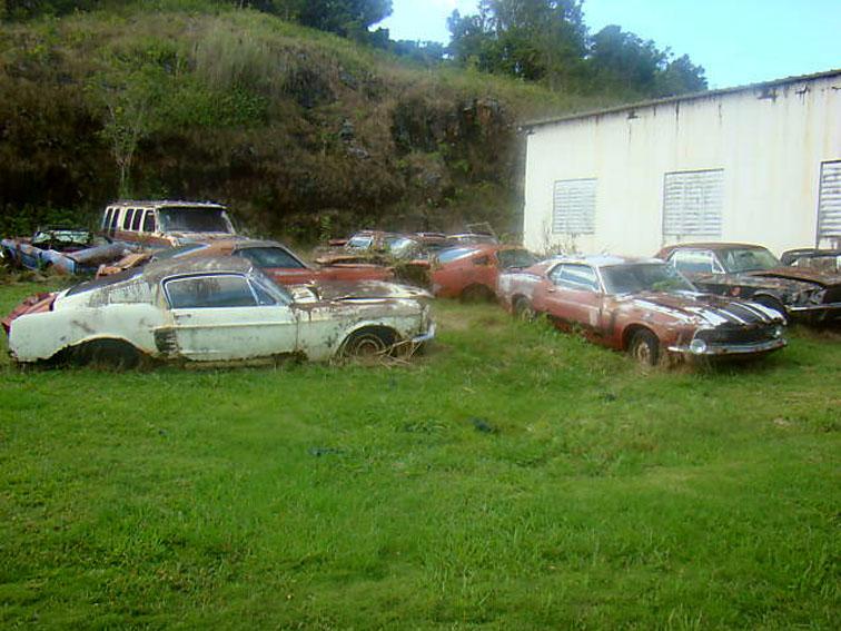 Cars  Florida